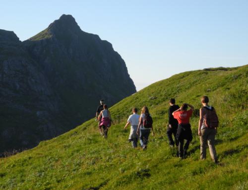 Cet été pour les Ados nous proposons également un Club Nature !